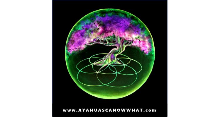 Ayahuasca! Now what? - Photo 1