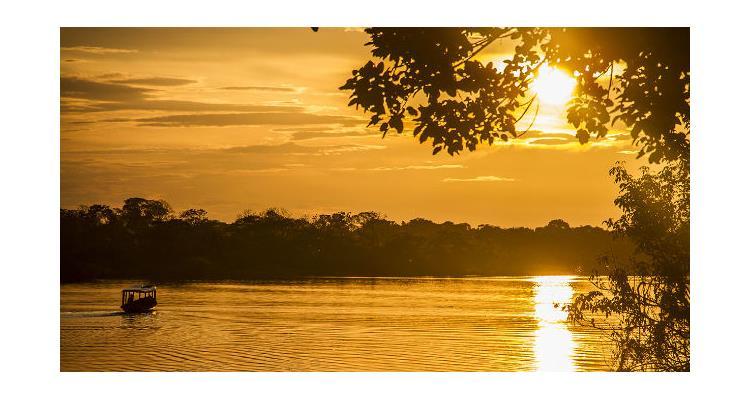 Amazonian untamed jungle tours - Photo 0