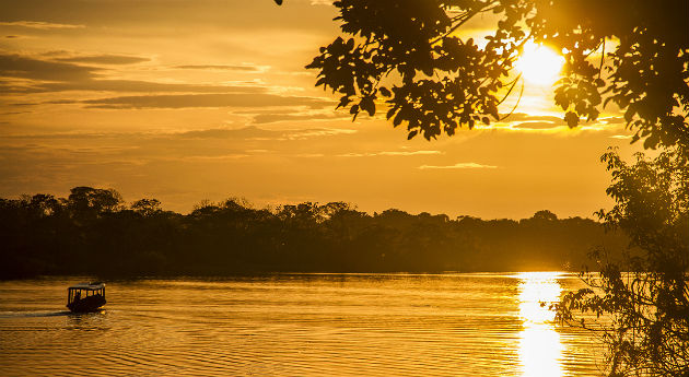 Amazonian untamed jungle tours