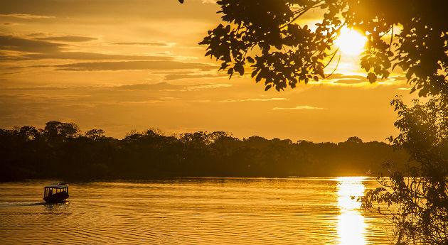 Amazonian untamed jungle tours