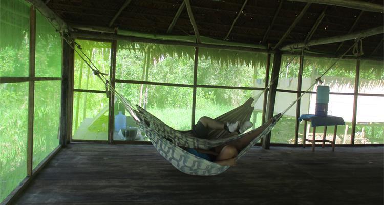 Amazonian untamed jungle tours - Photo 9