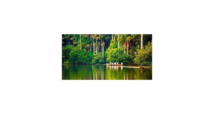 Amazonian untamed jungle tours - Photo 7