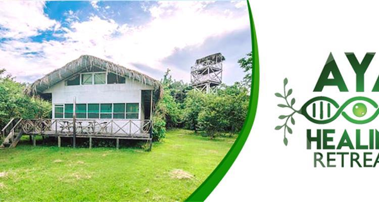 AYA Healing Retreats www.ayahealingretreats.com - Photo 2