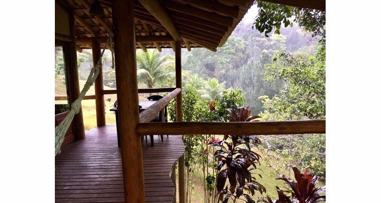 Spirit Vine  Ayahuasca Retreat - Photo 31