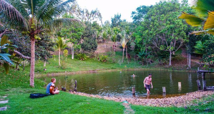 Spirit Vine  Ayahuasca Retreat - Photo 3