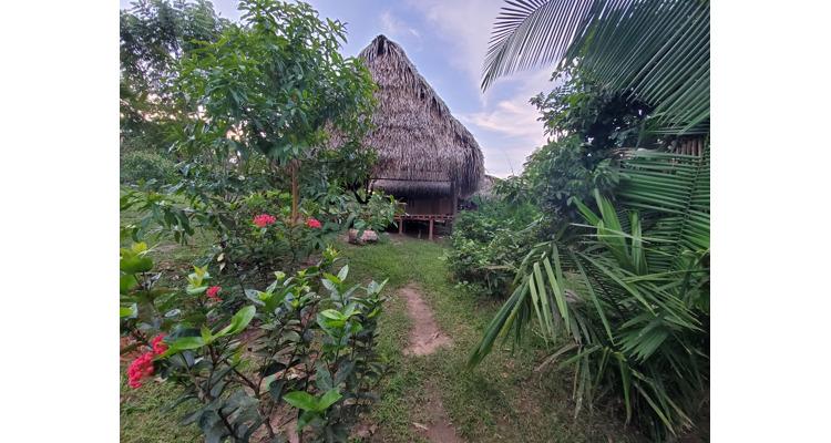 Mai Niti Healing Center - Photo 3