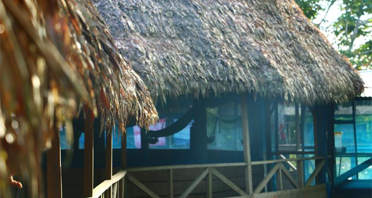 Arkana Spiritual Center - Pulse Tours - Photo 7