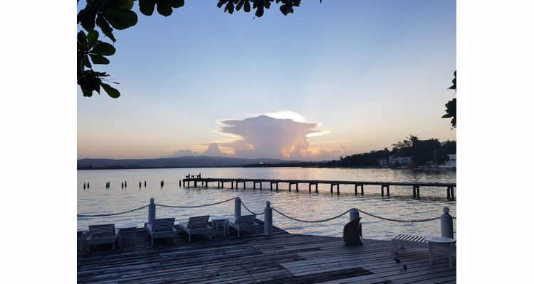 Atman Retreat - Psilocybin Experiences in Jamaica - Photo 3