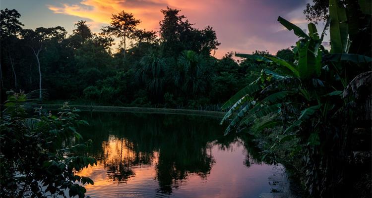 La Luna Del Amazonas - Photo 1