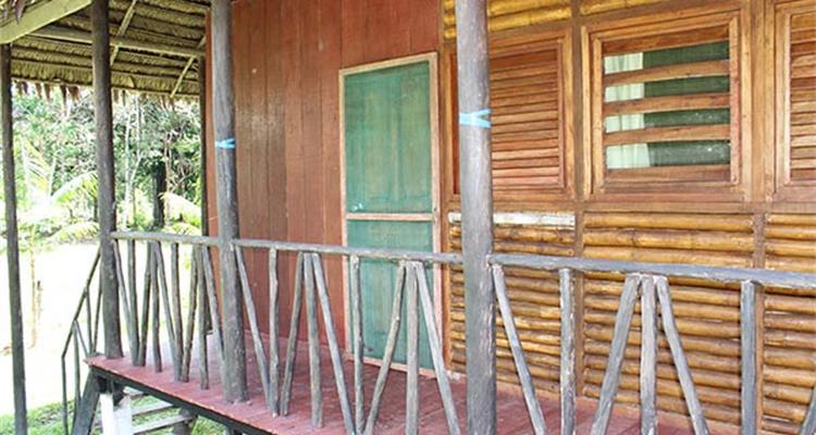 Ayahuasca Foundation - Photo 3