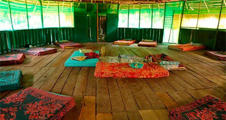 Ayahuasca Foundation - Photo 7