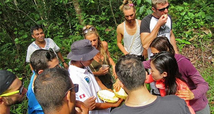 Ayahuasca Foundation - Photo 11