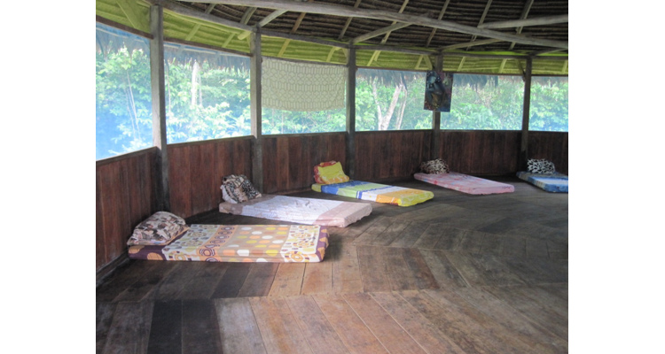 Selva Madre Spiritual and Healing Center - Photo 18