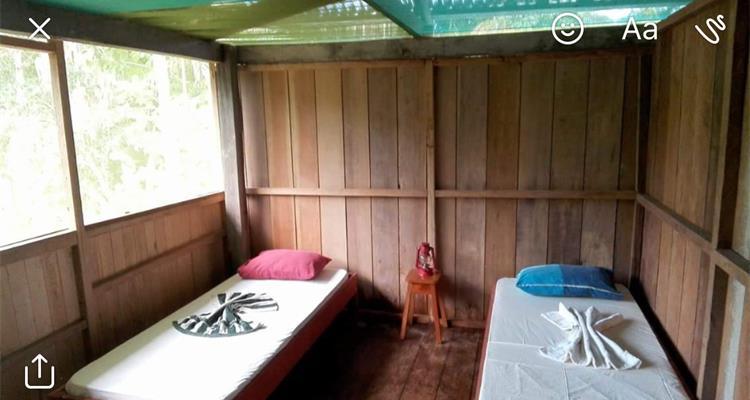 A Spiritual Hand Ayahuasca Center (Asha) - Photo 2